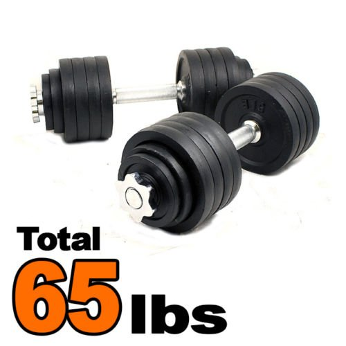 Pair 65 Lbs Painted Cast Iron Adjustable Weight Dumbbells Set Kit 32.5LbsX2PCS