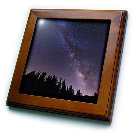 3dRose Danita Delimont - Stars - Milky Way Over Rose Valley, Los Padres National Forest, California. - 8x8 Framed Tile (ft_314688_1) ()