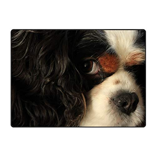 FANMIL Collection Rectangular Welcome Doormat (Machine-Washable/Non-Slip) Dog Indoor -