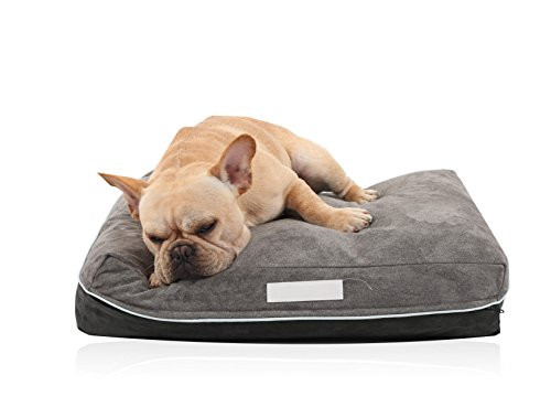(Laifug Pet/Dog Bed with Removable Washable Cover, Small (23''ⅹ 18''ⅹ 5''), Grey/Black Limited Edition Resurrection)