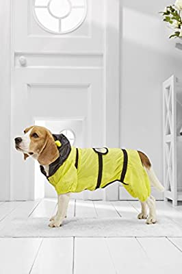 Medium Dog Bee Raincoat With Hood For Beagle Cocker Spaniel Sheltie Dachshund from NBL WorkShop