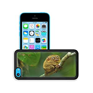 Animals Macro Branches Tarsiers Happy Face Apple iPhone 5C Snap Cover Premium Leather Design Back Plate Case Customized Made to Order Support Ready 5 inch (126mm) x 2 3/8 inch (61mm) x 3/8 inch (10mm) MSD iPhone_5C Professional Case Touch Accessories Graphic Covers Designed Model Sleeve HD Template Wallpaper Photo Jacket Wifi 16gb 32gb 64gb Luxury Protector Wireless Cellphone Cell Phone