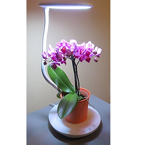 Led Desk Lamp Grow Light in US - 7