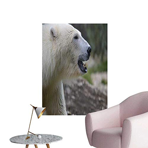 (SeptSonne Wall Decoration Wall Stickers A Polar Bear with White Fur Print Artwork,32