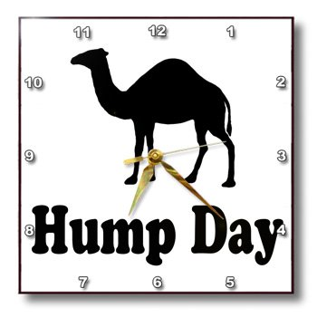 3dRose dpp_159637_1 Hump Day. Camel. Wednesday-Wall Clock, 10 by 10-Inch