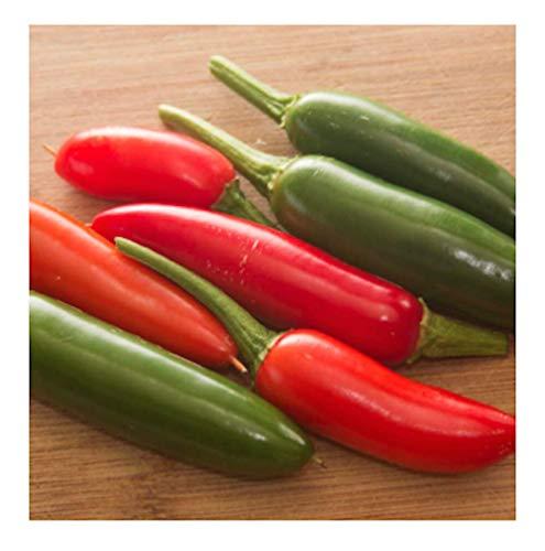 Serrano Hot Peppers Seeds, 100+ Premium Heirloom Seeds, 90% Germination, produces fiery hot pepper plants - Capsicum annuum - (Isla's Garden Seeds) - Non Gmo Organic, Highest Quality