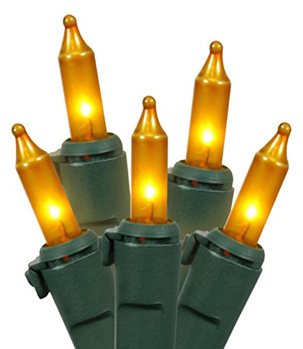 Vickerman Set of 50 Opaque Gold Mini Christmas Lights - Green Wire