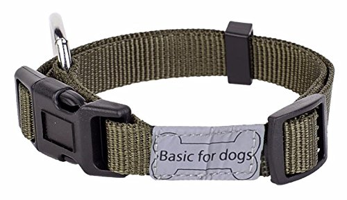 Wouapy Basic Line Collar for Dog, 15 mm Width, Neck Size 25/40 cm, Kaki