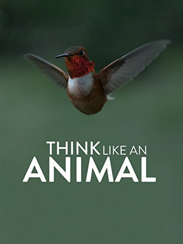 - Think Like an Animal
