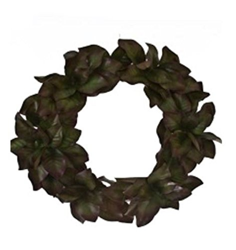 Grapevine Leaf - 7