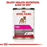Royal Canin Medium Puppy Dry Dog Food, 17