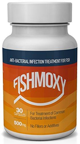 FishMoxy - 500MG (30 Capsules)