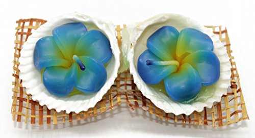 Hawaii Luau Party 2 Flower Candles with Shell Holder Set Blue in Ocean Scent by Hawaii Hangover