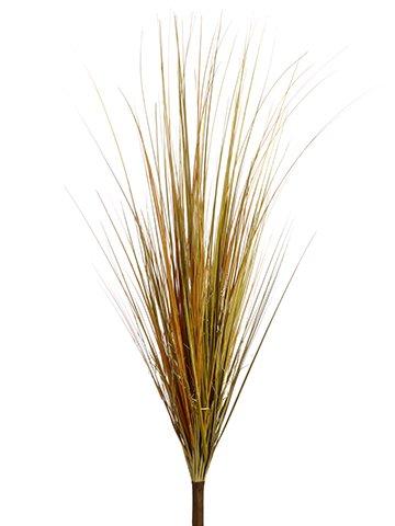 Bush Onion Grass - 40