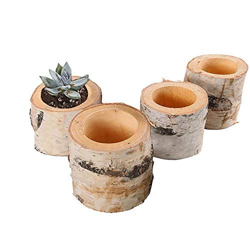 Succulent Plant Birch Bark Holder Tealight Candleholders Birch Flower Pots Wooden Candle Holder Party Decoration 4 Pcs