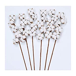 The Wreath King Cotton Stems-Pack 6 Cotton Stems, 5 Balls per Stem, 26″ Tall Artificial Cotton Spray Farmhouse Style Display Vase Filler, Rustic Decorations Home, Office, Hotel, Wedding Centerpiece