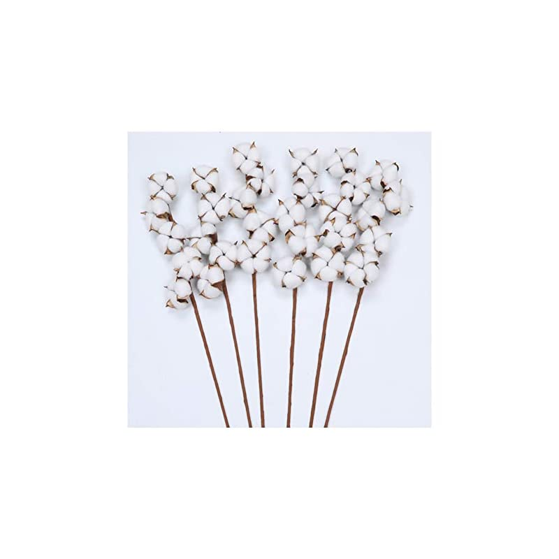 silk flower arrangements the wreath king cotton stems 6 pack with 5 cotton bolls per stem 26 inch cotton branches farmhouse decor fall decorations for rustic home, office, hotel, floral filler wedding centerpieces