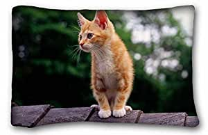 """Soft Pillow Case Cover Animal DIY Pillow Cover Size 20""""X30"""" suitable for Full-bed"""