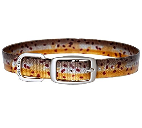 Dublin Dog 67934 KOA Fish Brown Trout Dog Collar, Medium