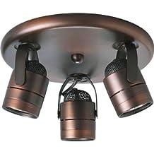 Progress Lighting P6153-174WB 3-Light Pinhole Back Directional, Urban Bronze