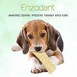 Vetoquinol Enzadent Dental Chews for Petite & Small