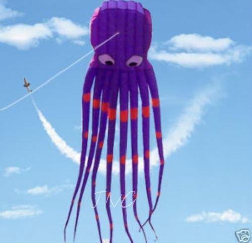 7M Large Octopus Parafoil Kite with Handle & String, Beach Park Garden Outdoor Fun by L.W.
