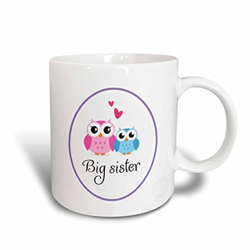 3dRose mug_157415_2 I Love My Big Sister Cute Owls Ceramic Mug, 15-Ounce
