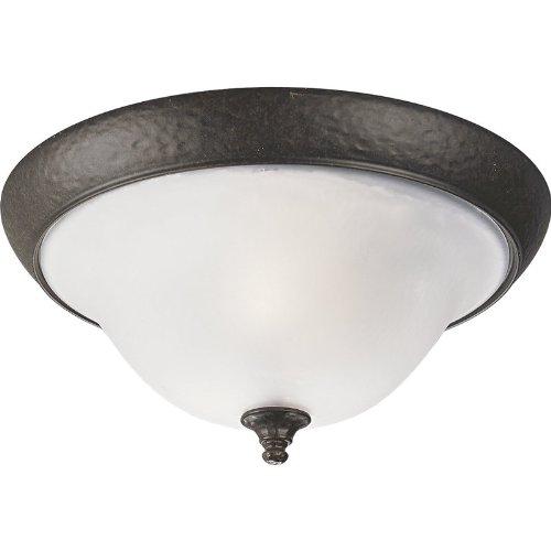 Progress Lighting P3551 Appeal 2 Light Flush Mount Ceiling Fixture, Forged Bronze -
