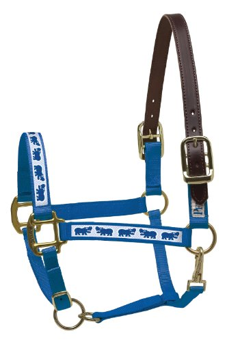 Ribbon Safety Halter Horse (Perri's Leather Mini B Royal Blue with Hippos Nylon Ribbon Safety Halter)