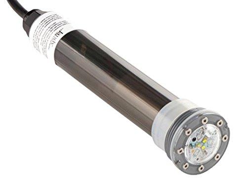 Jandy Zodiac JLUW20W100 12V 20W Underwater Nichless LED Light 100' Cord - (Jandy White Light)