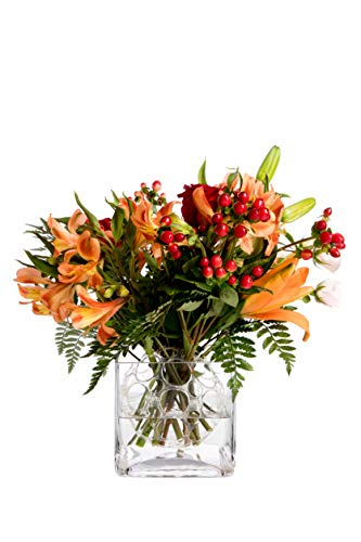 Flower Arranger (The Guppy Flower Holder Arranger for Fresh and Artificial Flower for Profesional and DIY Home   Pack 18)