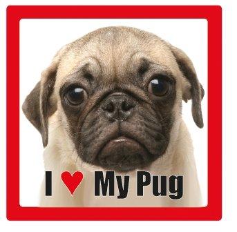Céramique Photographie Carré Avec Race De Chien My Verre Love En Dessous Carlin Dog Nom I IFwfW
