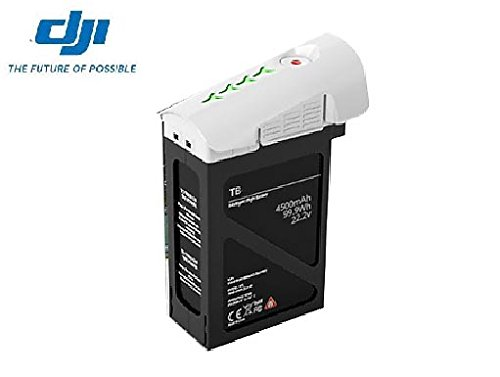 DJI INSPIRE1用 予備バッテリー TB48(5700mAh)の商品画像
