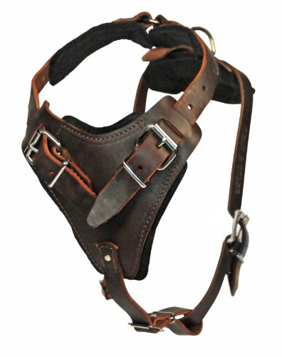 Dean and Tyler The Boss Nickel Belt Style Buckles Dog Harness, Brown, Medium - Fits Girth Size: 28-Inch to 37-Inch by Dean & Tyler