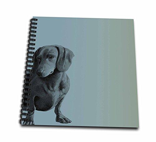 3dRose db_130560_1 Adorable Daschund Dog Pets Animals Drawing Book, 8 x 8