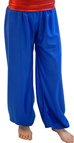 Dance-Stage-Panto-World Book Day-Prince-Aladdin-Genie RED Harem/Genie Pants Waistband - All Children's Sizes (Teen) ()