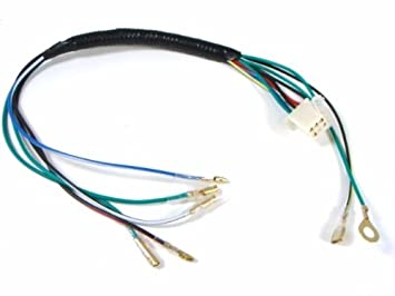 41 82E7QH%2BL._SX355_ amazon com 1z engine wiring harness xr70 xr50 crf50 pit bikes pit bike wiring harness at edmiracle.co