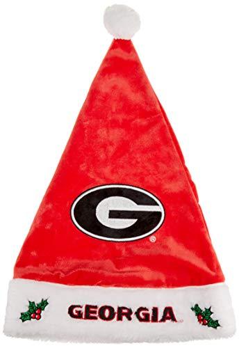 Georgia 2015 Solid Santa Hat