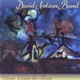 Visions Under the Moon by David Nelson Band (1999-04-20)