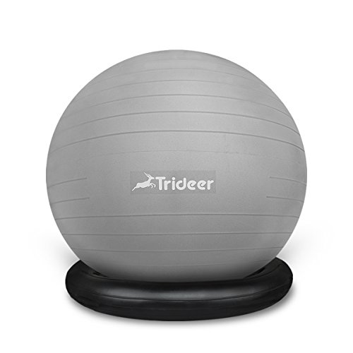 Trideer Exercise Ball Chair, Stability Ball with Ring & Pump, Flexible Seating, Improves Balance, Core Strength & Posture (Office & Home & Classroom) (Ball with Ring (Silver), 65cm) by Trideer