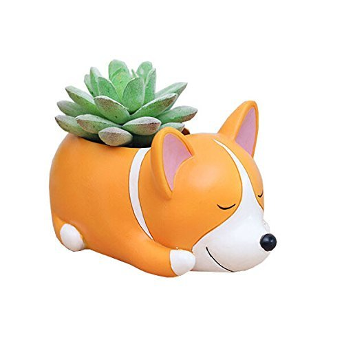 Youfui Home Decor Pot, Animal Succulent Planter Flowerpot for Home Office Desk Decoration (Sleep Crogi)
