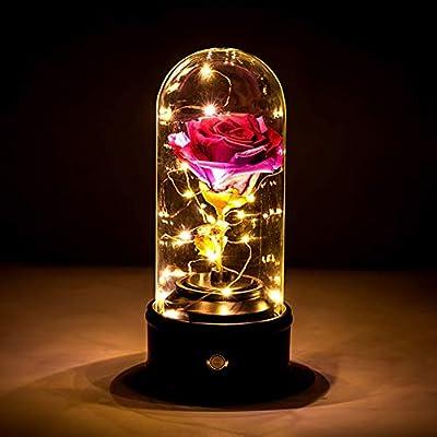 Blanchel - La bella y la bestia encantada rosa conservada flor ...