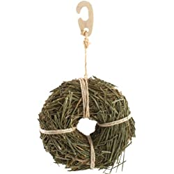 Ware Manufacturing Natural Wood Hang-N-Hay Donut Chew Toy for Small Pets