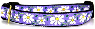 product image for Up Country Daisy Collar