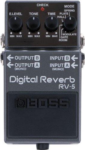 Digital Reverb & Delay