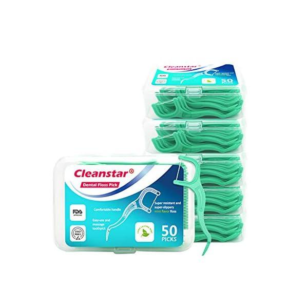 mreechan Hilo Dental, Palillos de Hilo Dental para Interdental Oral Limpieza, Palillos de hilo dental Plástico,Floss… 2