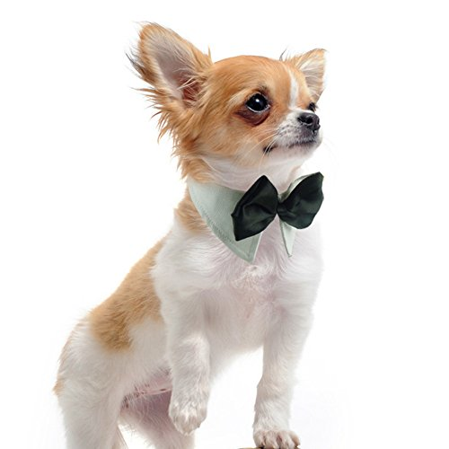Lovely Baby Best Adjustable Fashion Pet Bow Tie Bowknot Collar for your dogs and cats Daily or Party Use LY-Collar