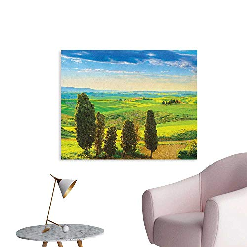Anzhutwelve Nature Photographic Wallpaper Rural Sunset in Italy Countryside with Trees Fresh Meadows and Clear Sky Image Print Space Poster Blue Green W32 xL24