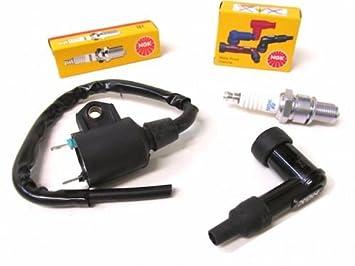 Keeway Sachs - Bobina de encendido con conector de bujía y bujía para Keeway, Sachs: Amazon.es: Coche y moto