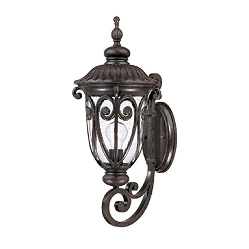 (Acclaim 2111MM Naples Collection 1-Light Wall Mount Outdoor Light Fixture, Marbleized Mahogany)
